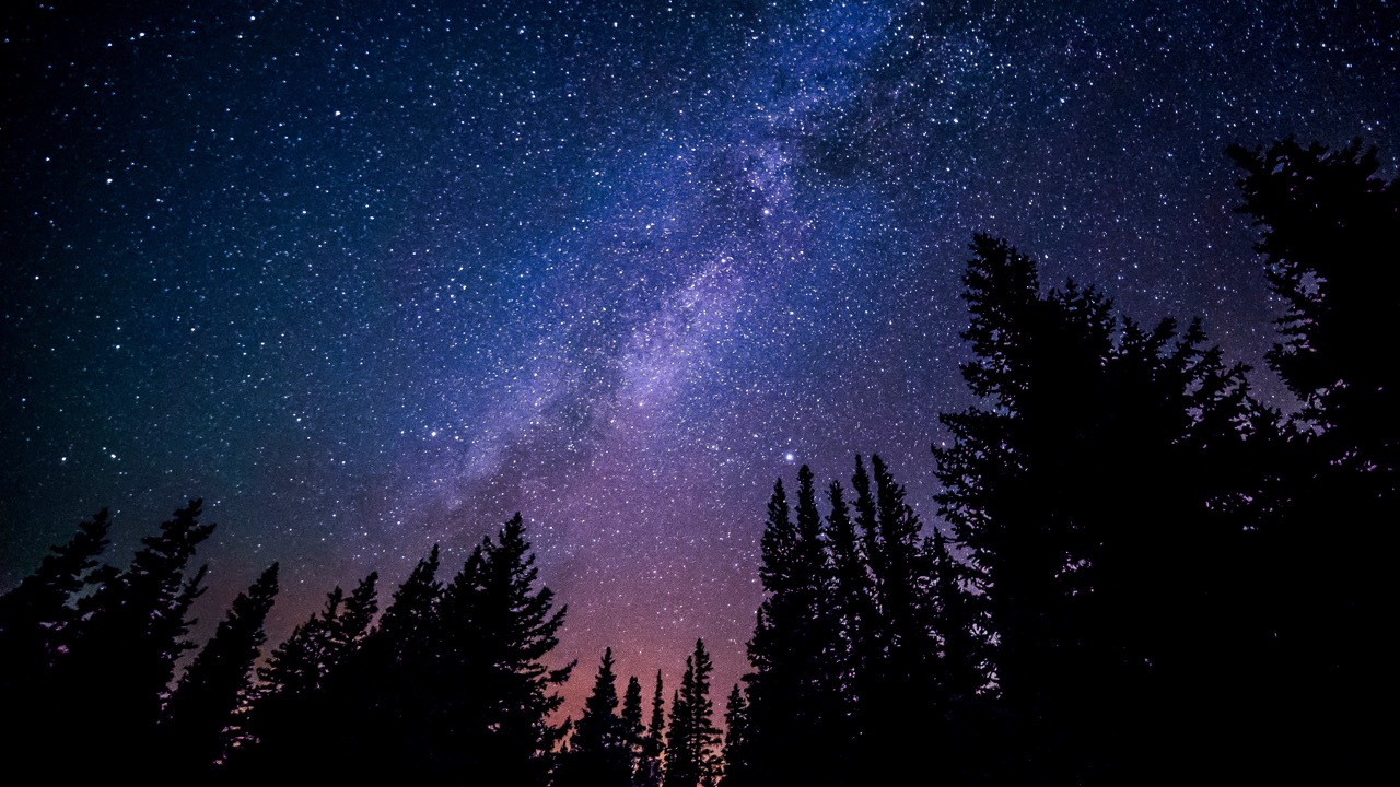 star filled night sky over forest