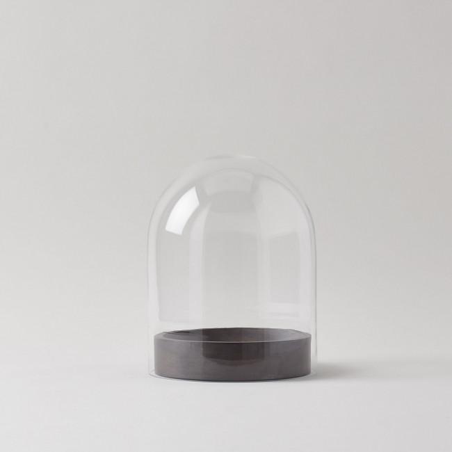 Globe 3.5 Glass Cloche + Wood Cone