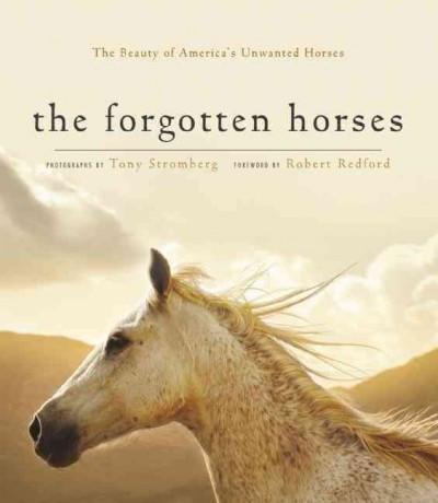 Forgotten Horses