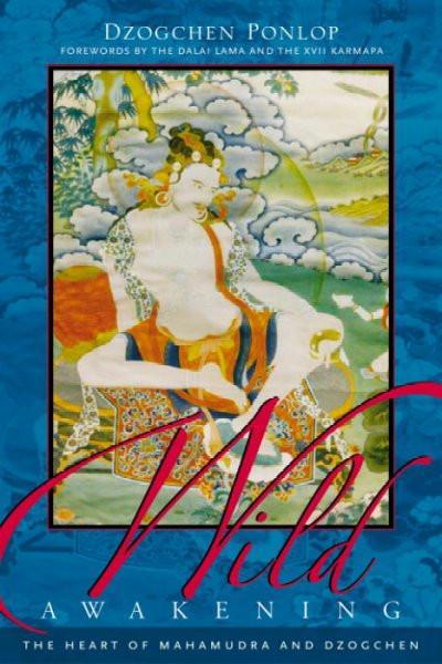Wild Awakening : The Heart of Mahamudra & Dzogchen