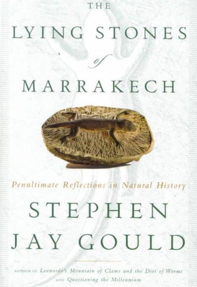 Lying Stones of Marrakech