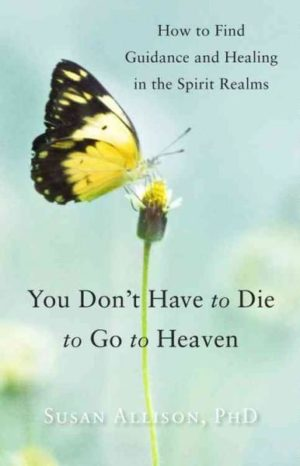 You Don't Have to Die to Go to Heaven : How to Find Guidance and Healing in the Spirit Realms
