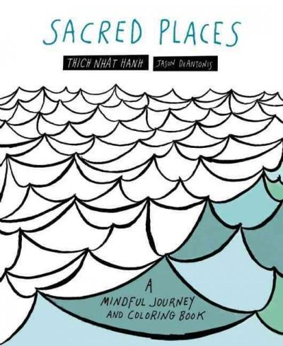 Sacred Places Adult Coloring Book