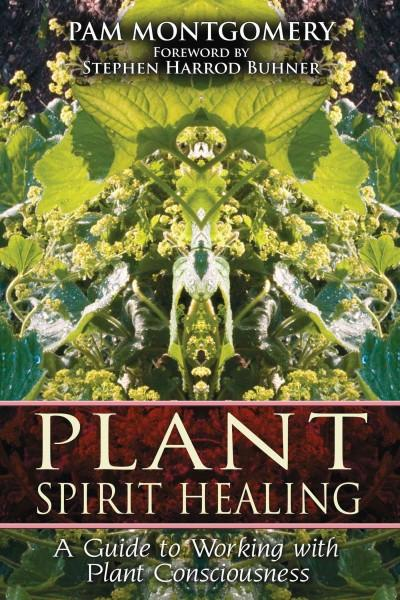 Plant Spirit Healing : A Guide to Working With Plant Consciousness