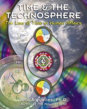 Time and the Technosphere : The Law of Time in Human Affairs