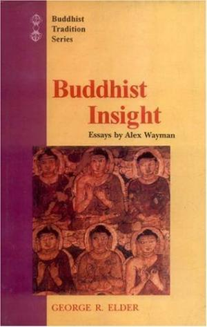 Buddhist Insight (Religions of Asia Series, No 5)