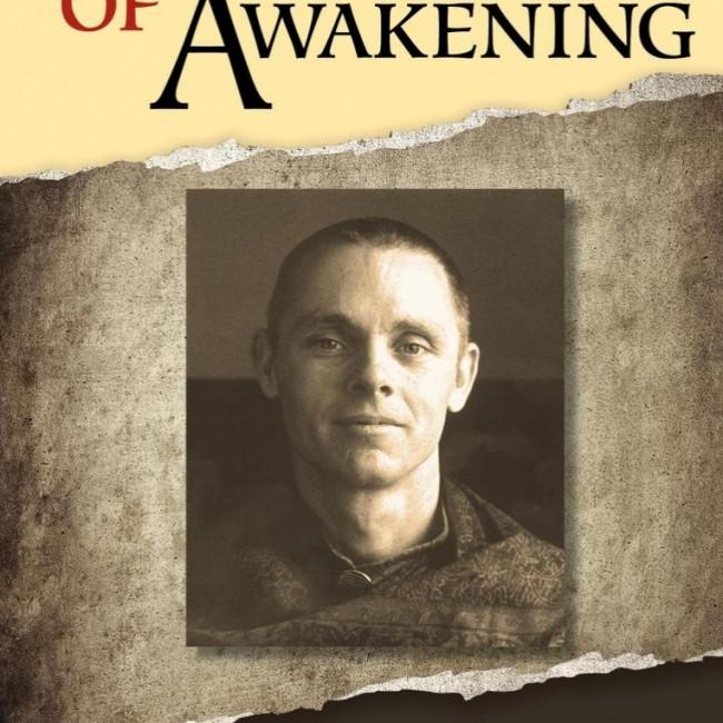 Impact of Awakening