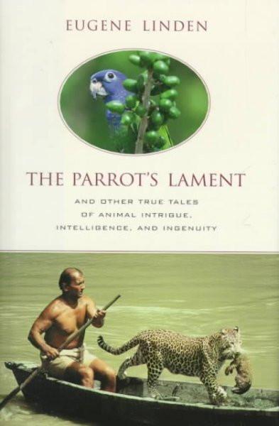 Parrot's Lament