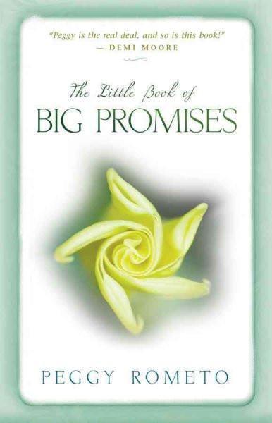 Little Book of Big Promises