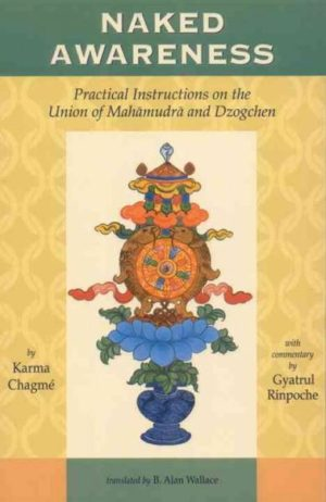 Naked Awareness : Practical Instructions on the Union of Mahamudra and Dzogchen