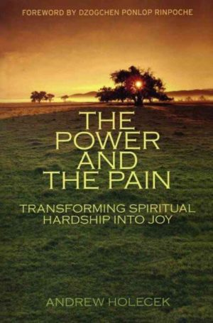 Power and the Pain