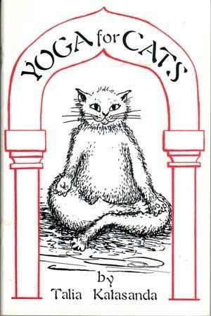 Yoga for Cats