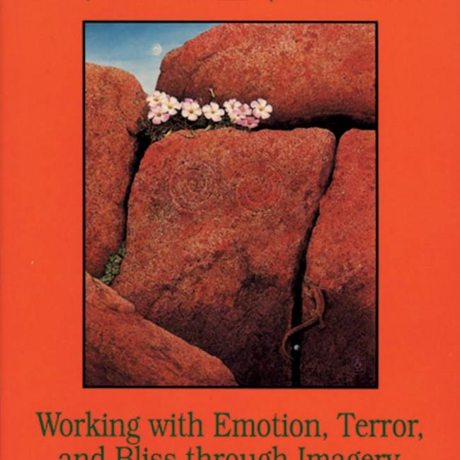 Living the Wheel : Working With Emotion, Terror, and Bliss Through Imagery