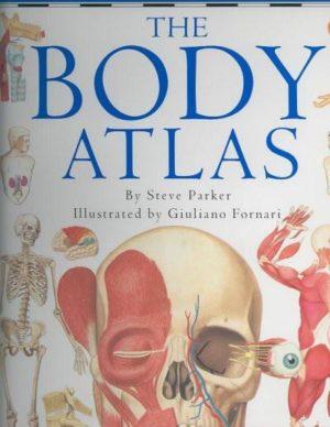 Body Atlas