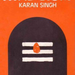 Essays on Hinduism