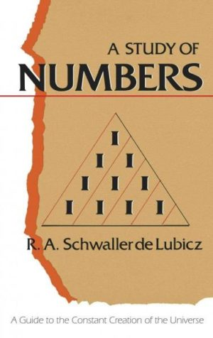 Study of Numbers : A Guide to the Constant Creation of the Universe