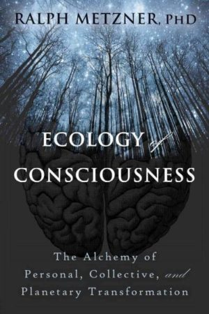 Ecology of Consciousness : The Alchemy of Personal, Collective, and Planetary Transformation