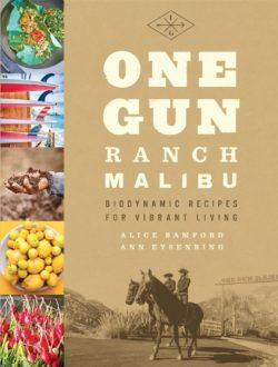 One Gun Ranch Malibu book cover