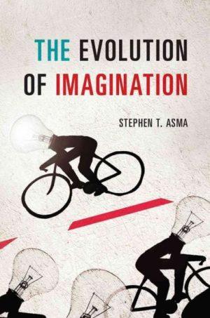 Evolution of Imagination