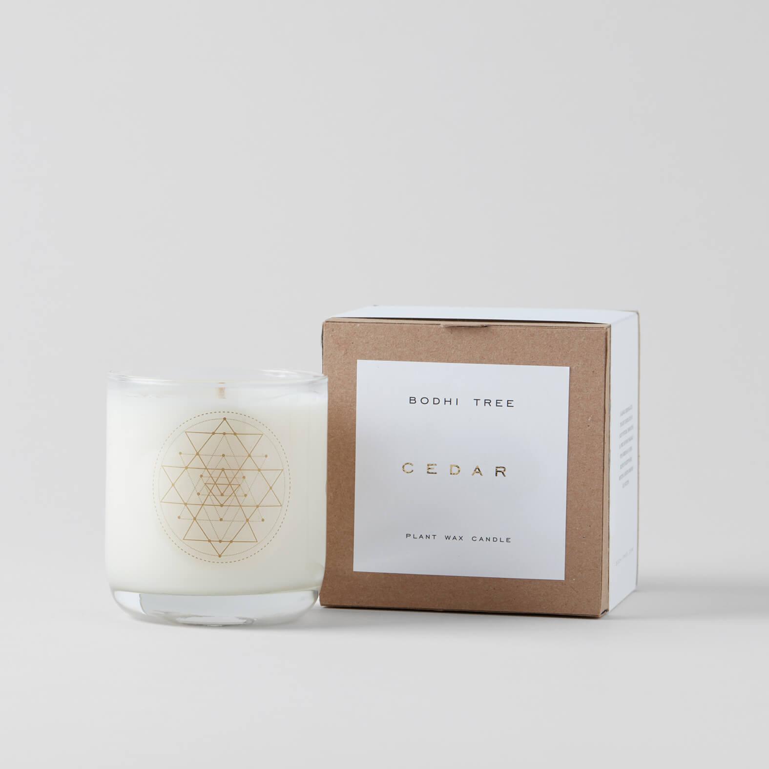 Bodhi Tree Cedar Candle