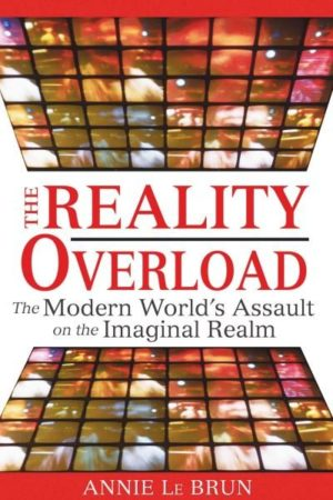 Reality Overload : The Modern World's Assault on the Imaginal Realm