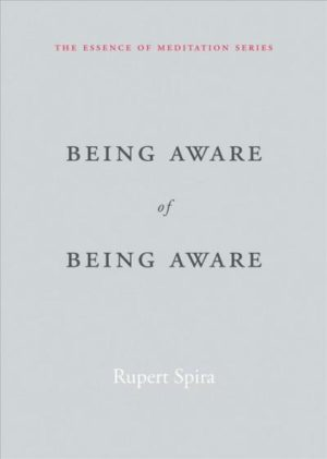 Being Aware of Being Aware