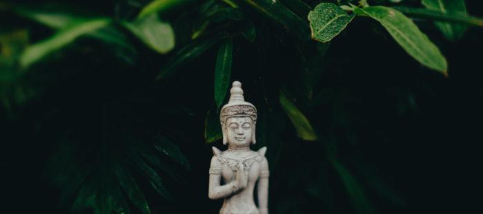 Bodhi Talks on Personal Development