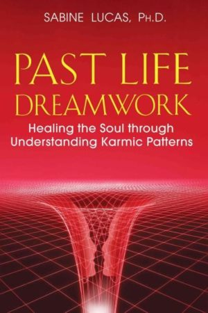 Past Life Dreamwork : Healing the Soul Through Understanding Karmic Patterns