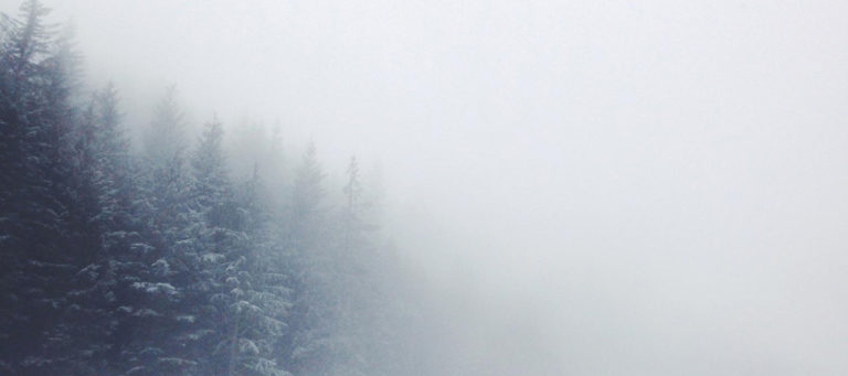 5 Rituals for the Winter Solstice