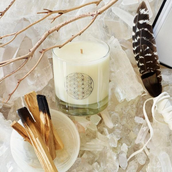 Bodhi Tree Signature Scented Candle