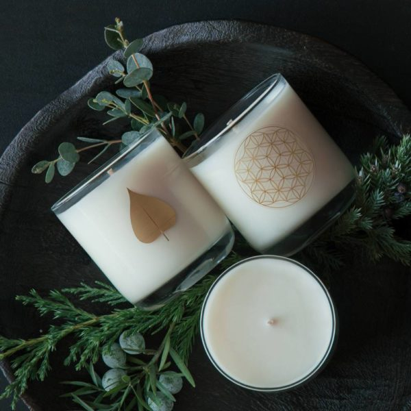 Bodhi Tree Cedar Scented Candle