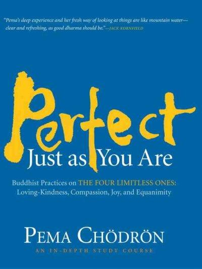 Perfect Just As You Are : Buddhist Practices on the Four Limitless Ones: Loving-Kindness, Compassion, Joy, and Equanimity