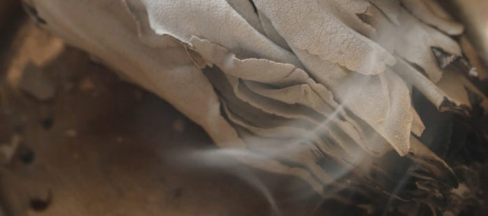 The Scientific and Spiritual Benefits of Smudging