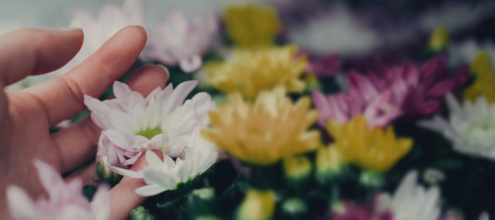 5 Ways to Practice Gratitude and Boost Happiness